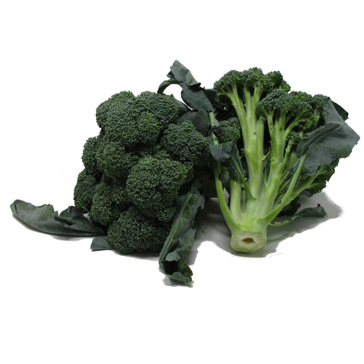 broccoloxx1