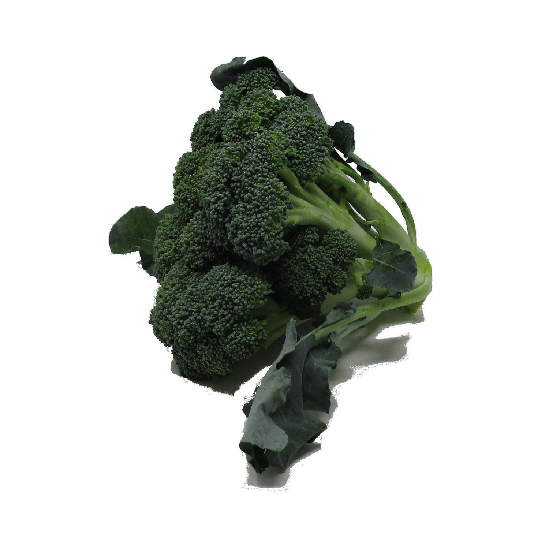 broccoloxx2